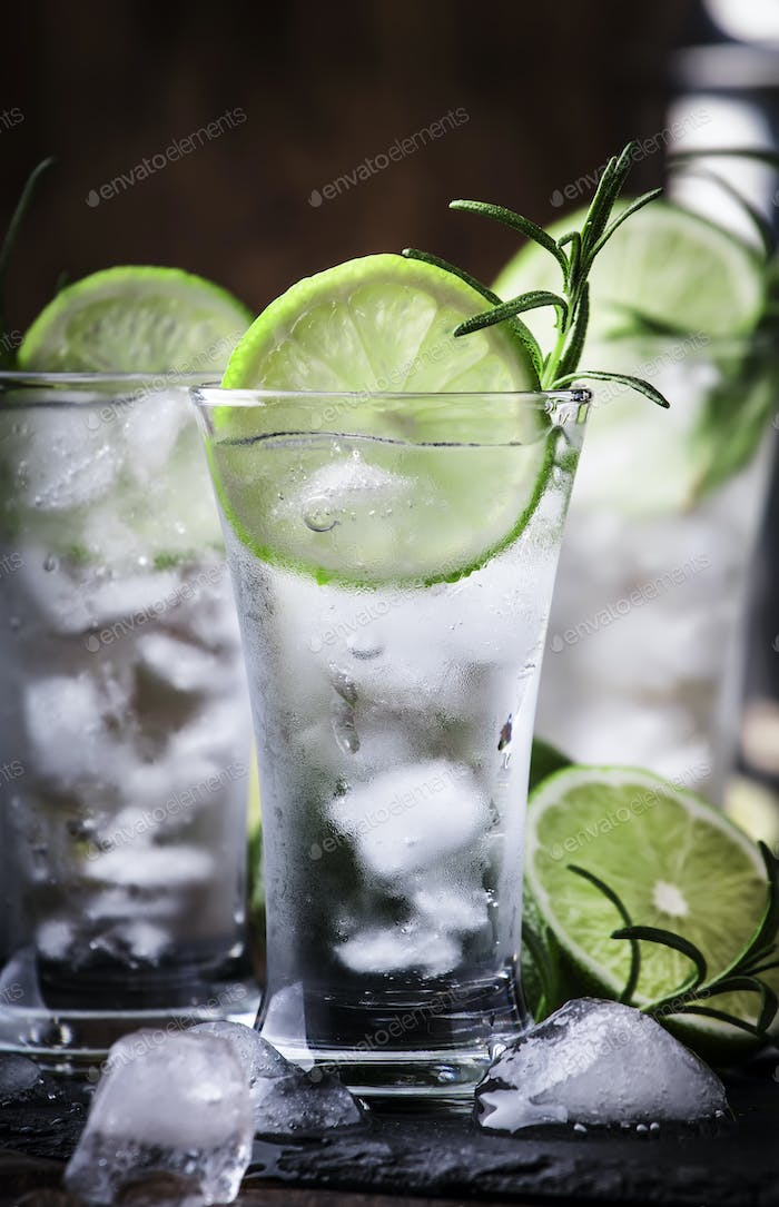 Classic gin tonic cocktail with lime, ice and rosemary.