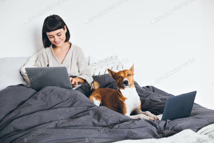 Young woman work on laptop in bed with her dog