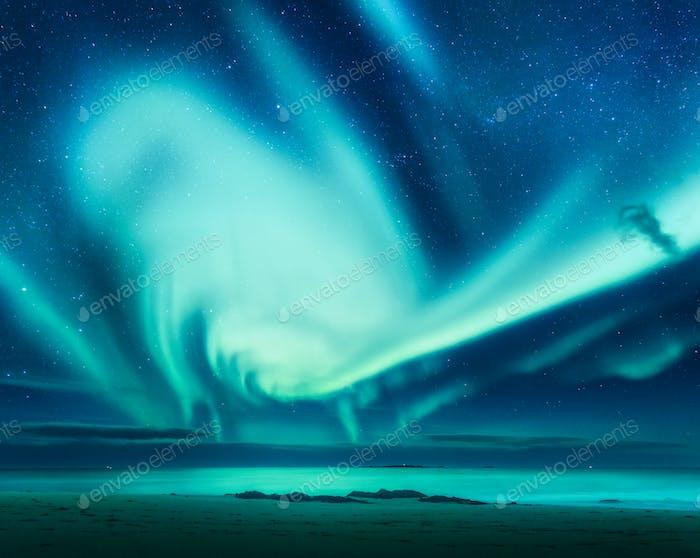 Polar lights above the sea. Green northern lights