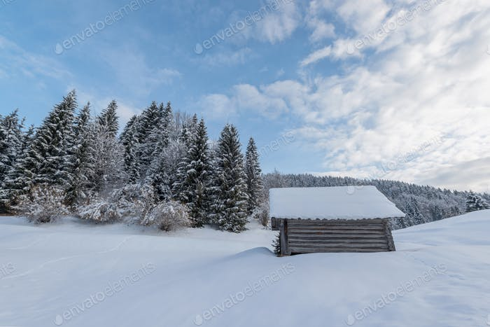 Winter fairy tale at sunrise on Pokljuka plateau in Slovenia