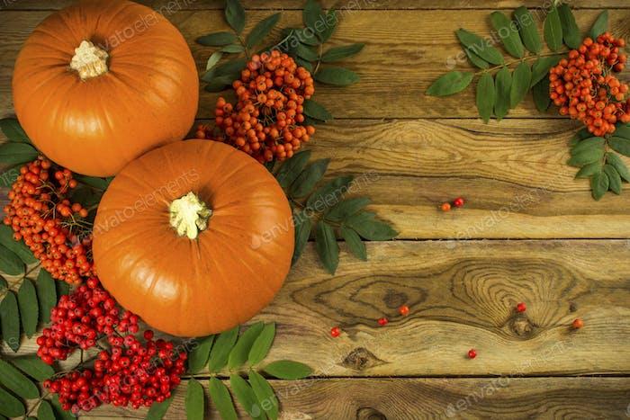 Herbst, Kürbisse und Eberesche