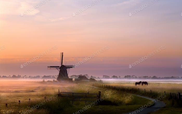 Windmühle auf der Weide bei Sonnenaufgang