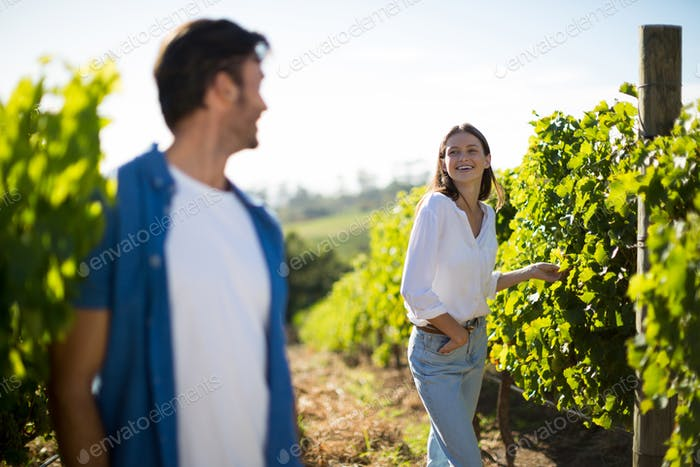 Happy couple looking at each other standing in vineyard