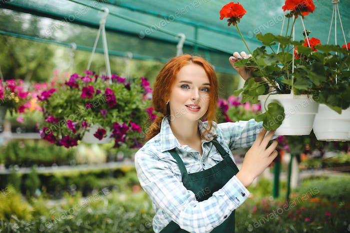 Schöne Blumenhändler in Schürze arbeiten mit Blumen
