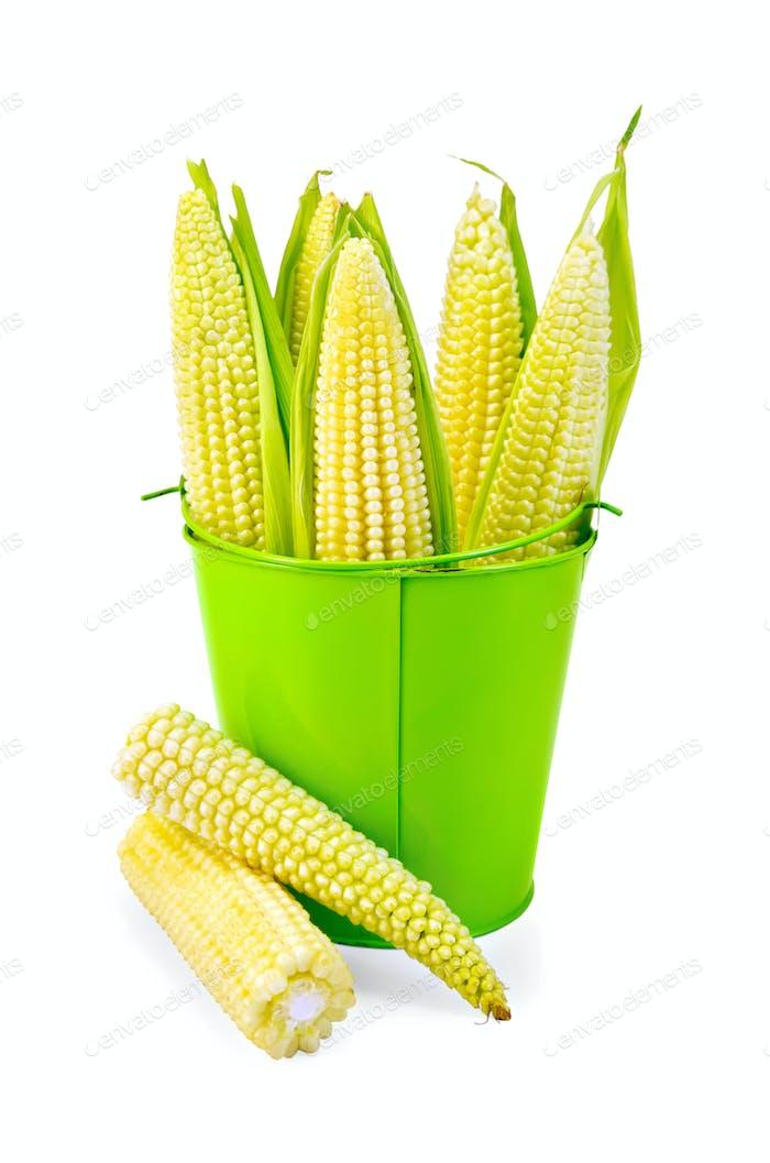 Mais auf dem Kolben in einem grünen Eimer