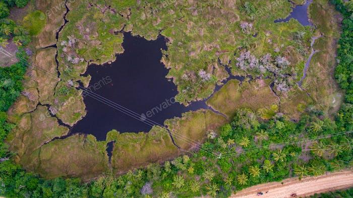 бассейн бегемота на острове Мафия