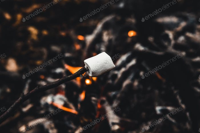 Marshmallows roasting on the camp fire and getting nicely golden brown