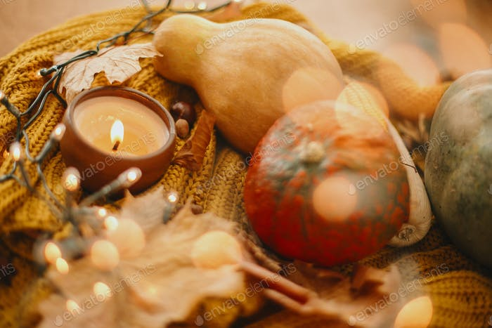 Cozy rustic autumn image