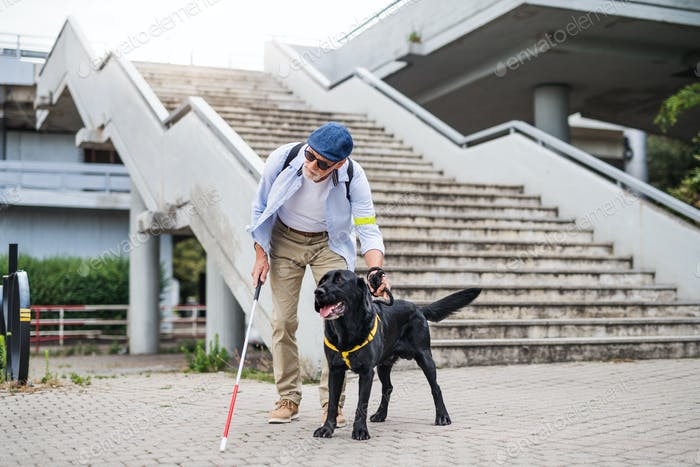 Senior blind man with guide dog standing by the stairs in city
