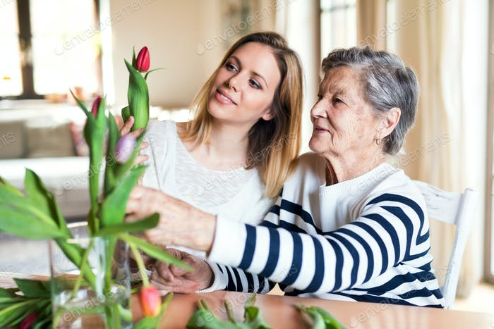 Elderly grandmother with an adult granddaughter at home.