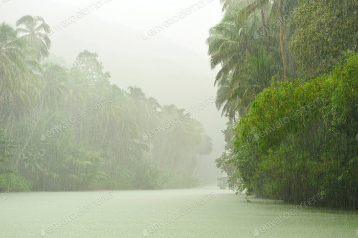 Tropical rain above river