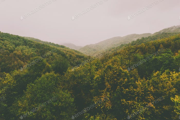 View of foggy mountains with trees