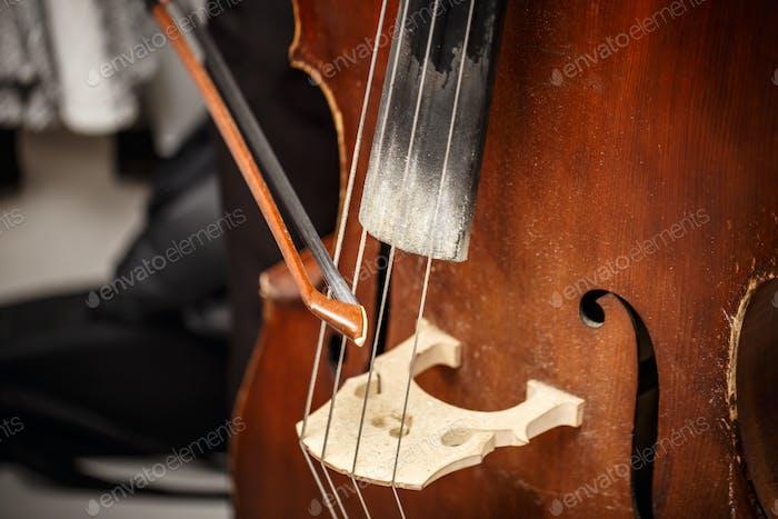 Double bass, wooden musical instrument
