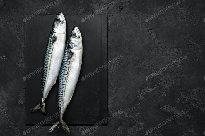 Mackerel. Fresh raw fish, top view, flat lay