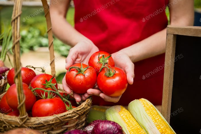 Mid section of woman holding fresh tomato at vegetable stall