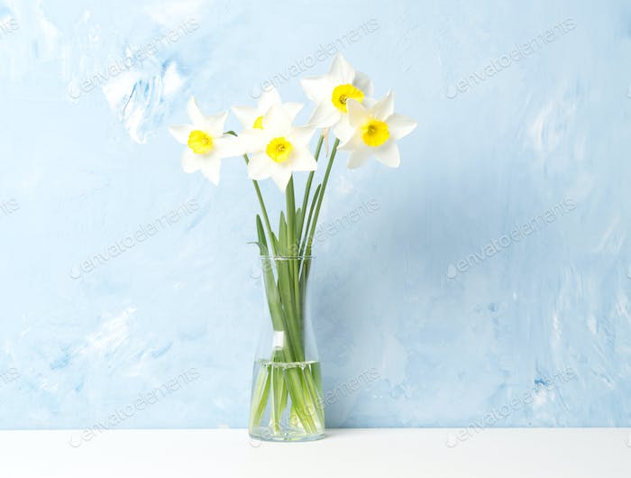 Bouquet of fresh flowers, daffodils in vase in middle of table, opposite blue textured wall