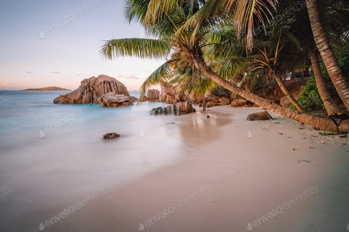 La Digue Island, Seychelles. Beautiful tropical calm sandy beach with exotic plant trees in evening