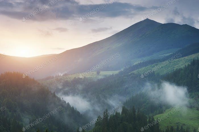 Berglandschaft Natur.
