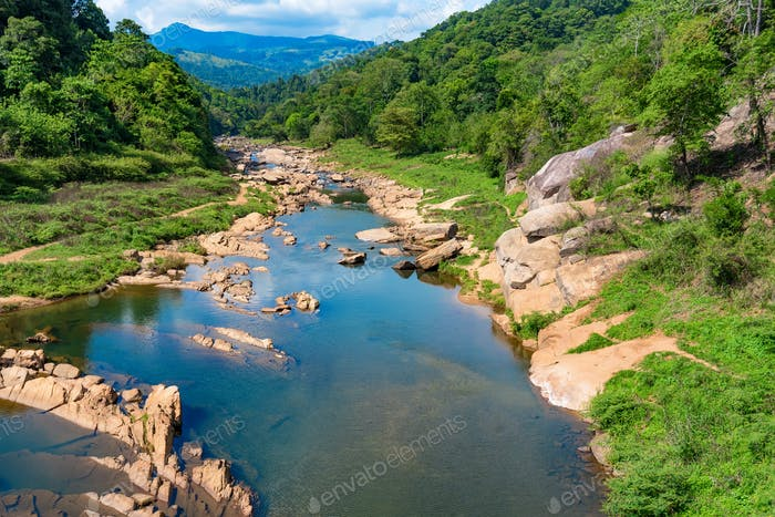 Landscape of river in jungle of Sri Lanka
