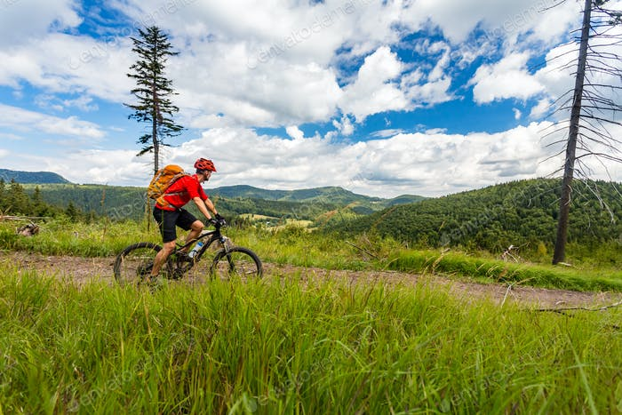 Mountain biking man riding in woods and mountains