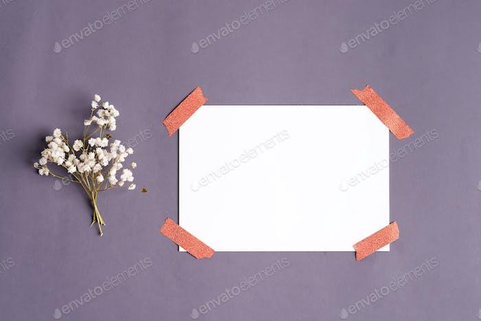 Festliche Grußkarte aus kleinen Zweigen von Gypsophila Blumen und leeres weißes Papier für Text