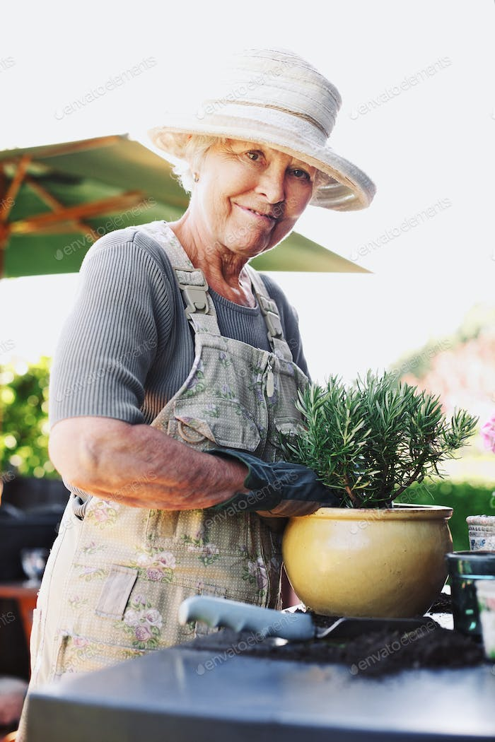 Happy senior female gardener potting new young plant