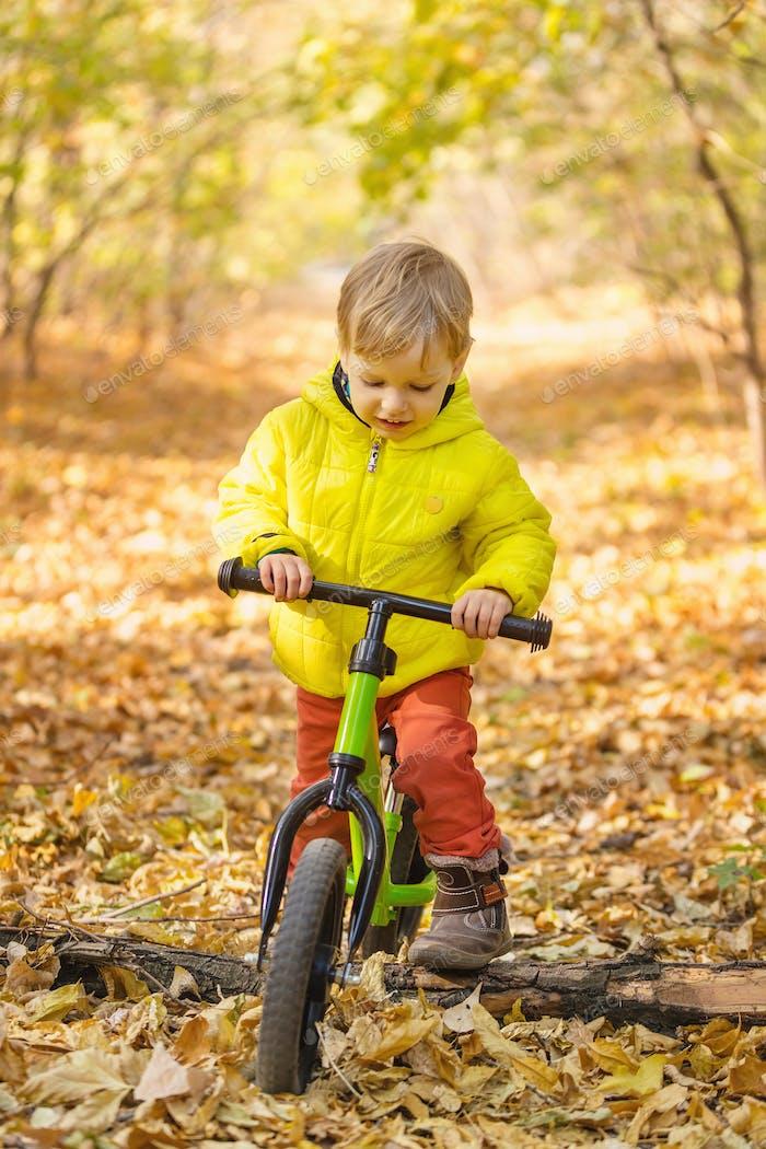 Cute little boy riding learner bike in autumn par