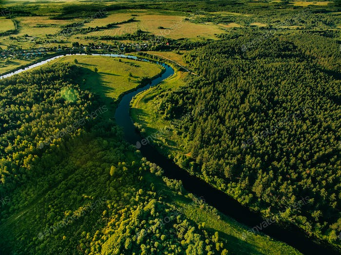 Aerial view of the forest river in summer landscape