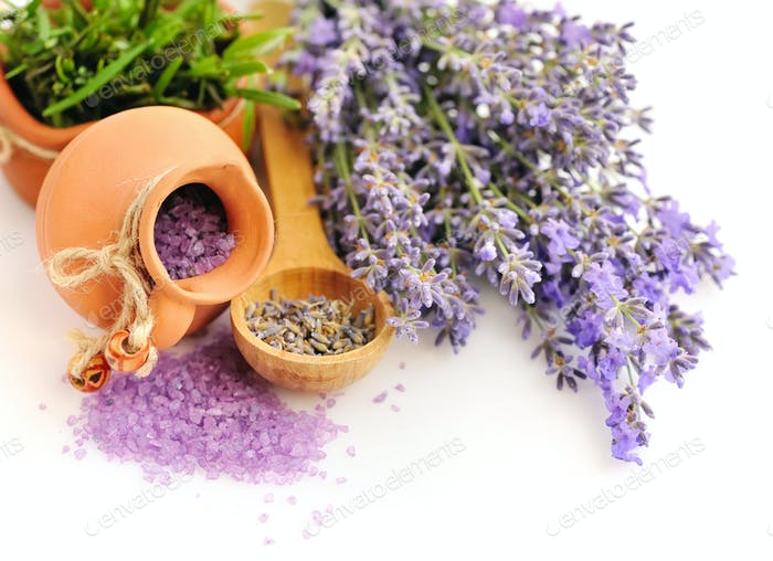 Lavender fresh and dry flowers and a salt lavender on white