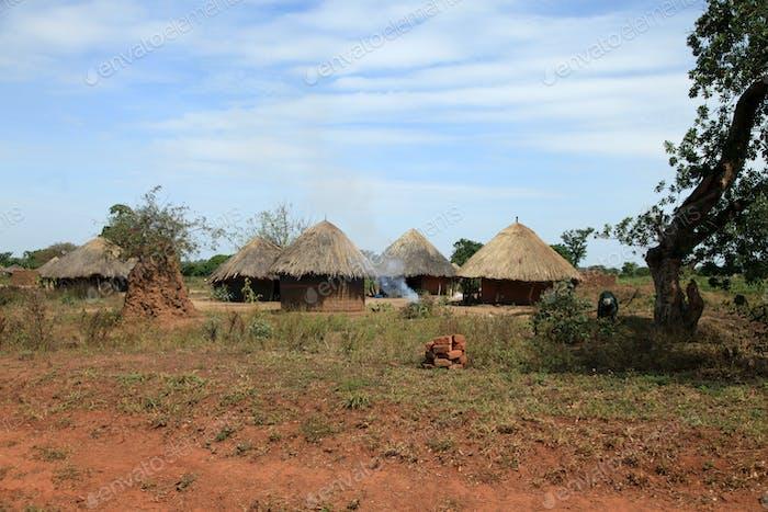 Dirt Road - Uganda, Africa