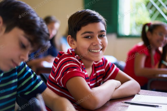Portrait Of School Boy Looking At Camera In Class