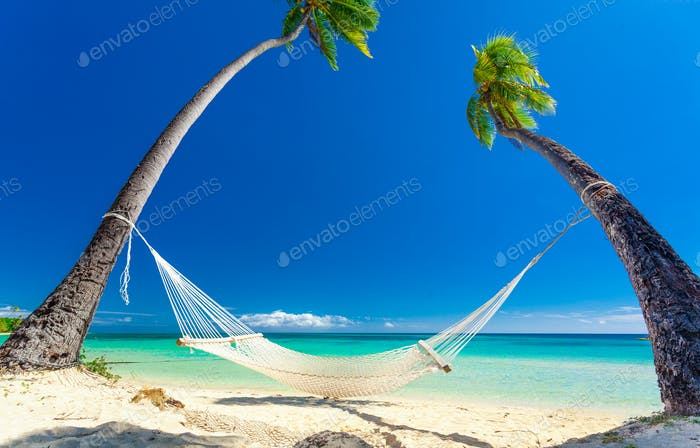 Empty hammock in the shade of palm trees, Fiji Islands