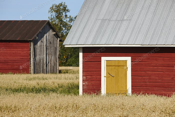 Traditional finnish red wooden farm in the countryside. Finland