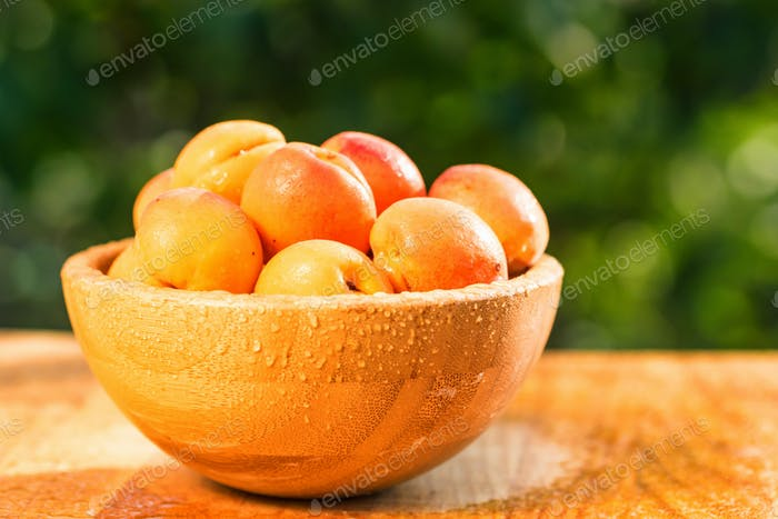Delicious ripe apricots in wooden bowl on table