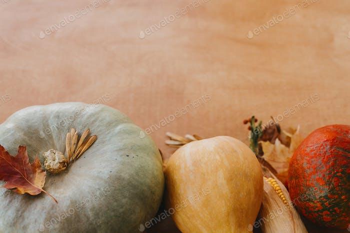 Pumpkins, autumn leaves, corn, walnuts,chestnuts