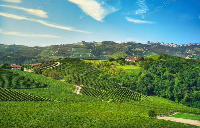 Langhe vineyards panorama and Diano d Alba, Piedmont, Italy Europe.