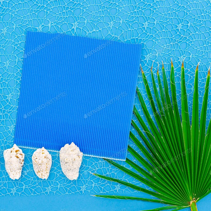 Palm leaf and seashells. Minimal Tropic Style