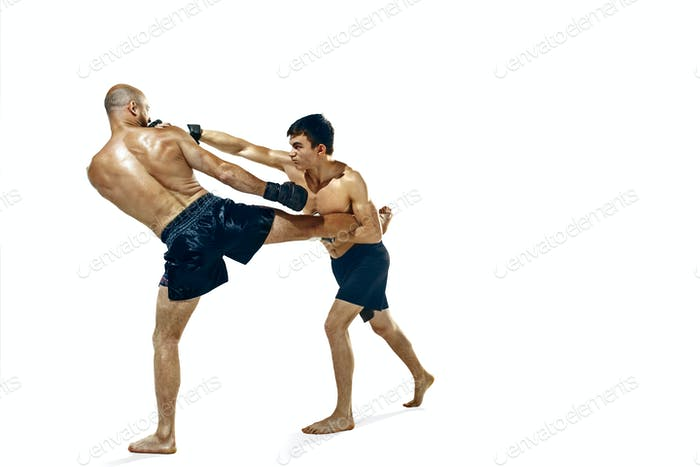 Two professional boxer boxing isolated on white studio background
