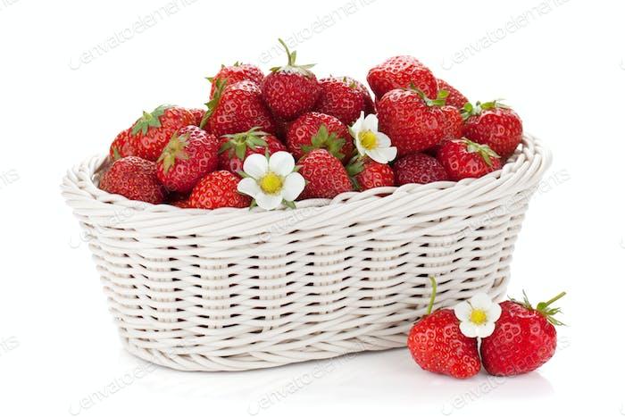 Basket of ripe strawberries