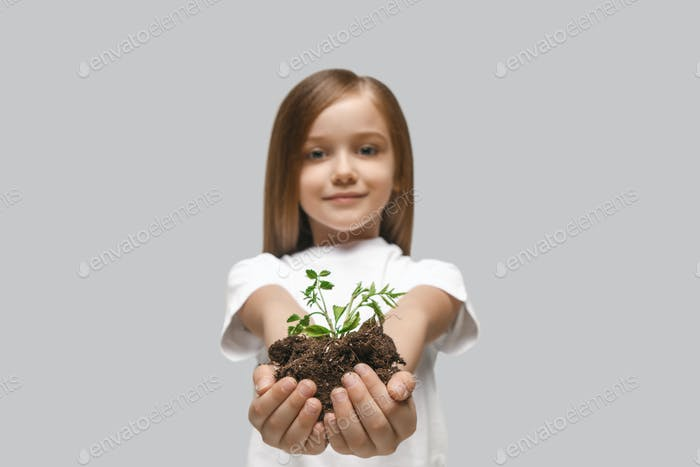 Kids hands with seedlings on gray studio background. Spring concept, nature and care.