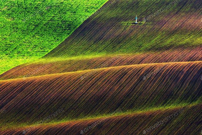 Зеленые и коричневые волны сельскохозяйственных полей