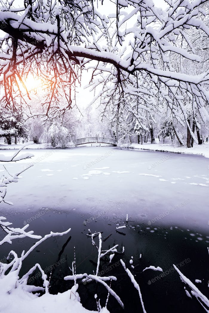 Winter landscape by a frozen pond