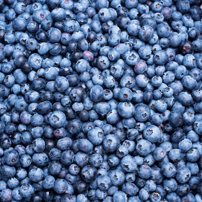 Macro texture of blueberry berries close up. Border design. Summer, vitamin, vegan, vegetarian