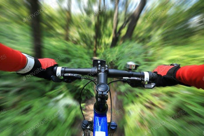 Blurred cross country biking in summer rainforest