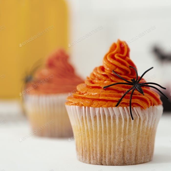 Close up of orange pumpkin cupcake with black scary spider