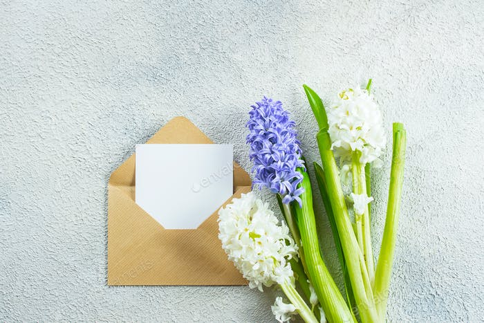 Mother's day Holiday Concept. Hyacinth flowers and empty card on light concrete background. Mockup