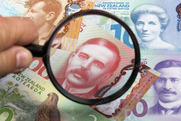 New Zealand dollars in a magnifying glass