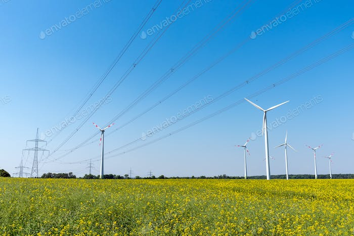 Field of rapeseed with high-voltage lines and wind turbines