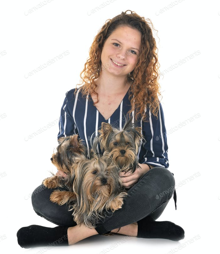 young yorkshire terrier and woman