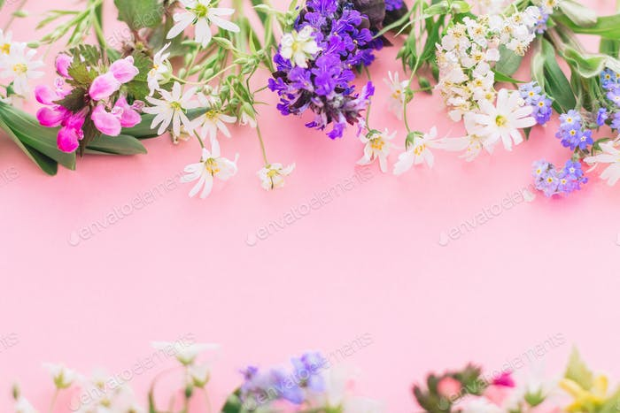 Wildflowers colorful frame on pink paper background with space for text